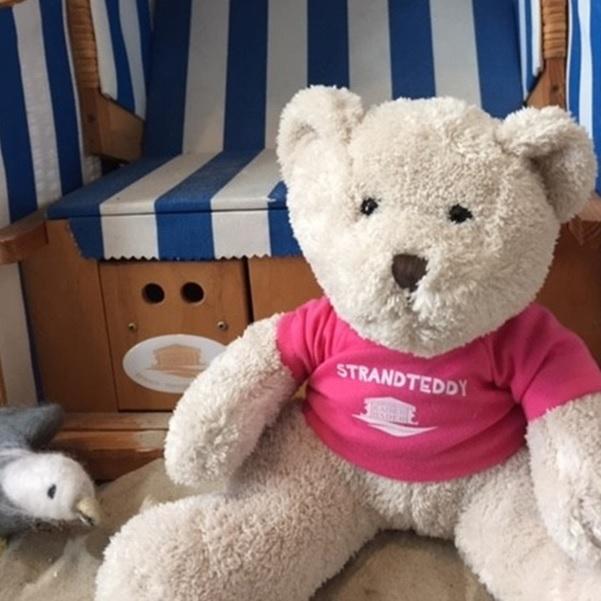 Teddy_rosa.jpg